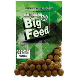 Haldorado - Big Feed Boilie C21 - Calamar 800g